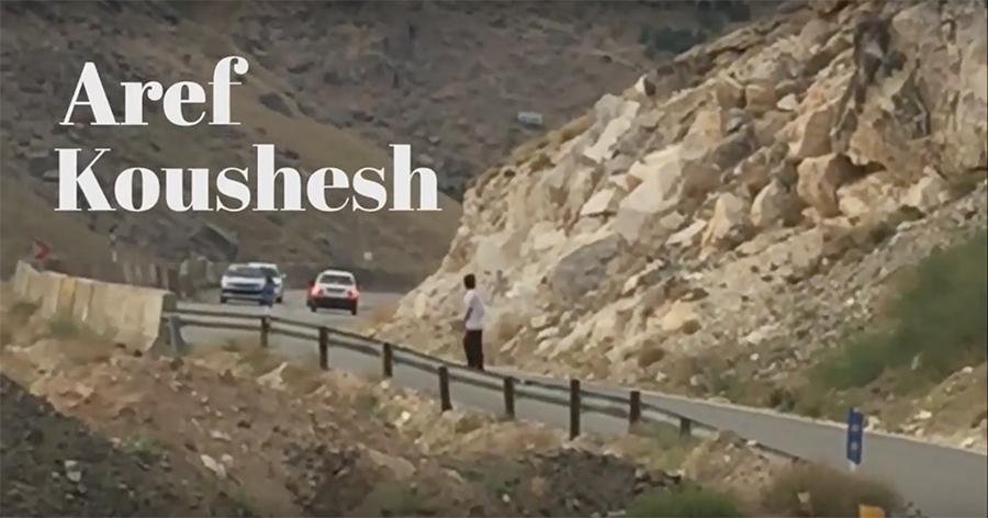 Aref Koushesh_Vans Videopart.