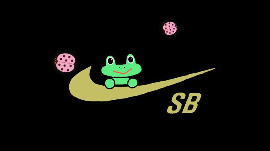 Nike SB_Frog Skateboards.