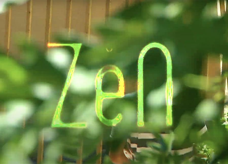 Zen_Rave Skateboards.