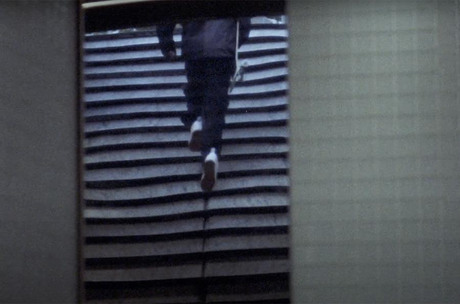 Popo Tranding x DC Shoes.